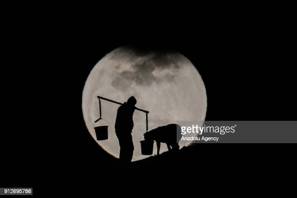 Silhouettes of a dog on a leash drinking water out of a basket carried by a man using shoulder pole are seen in front of the 'Super blue blood moon'...