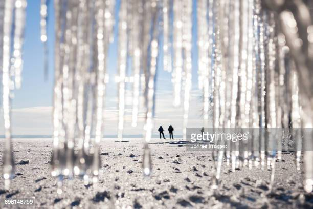 silhouettes of people on beach. icicles on foreground - norrkoping fotografías e imágenes de stock