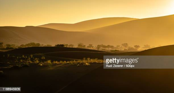 silhouettes of sand dunes in namib desert at sunset, namibia - ナミブ砂漠 ストックフォトと画像
