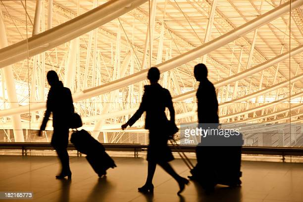 Silhouettes of Travellers in Airport, Blurred Motion