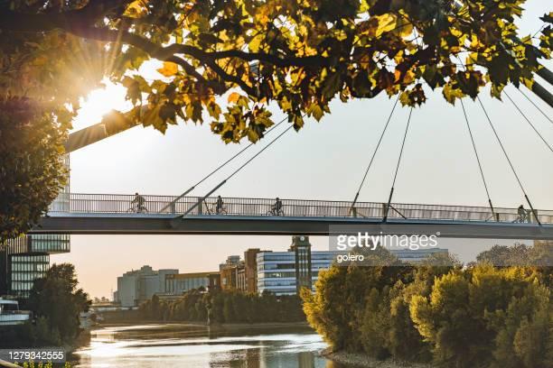 silhouetten auf rheinbrücke in düsseldorf im frühherbst - düsseldorf stock-fotos und bilder