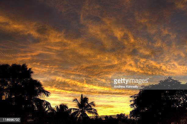 silhouettes palm tree with clouds - port au prince stock pictures, royalty-free photos & images