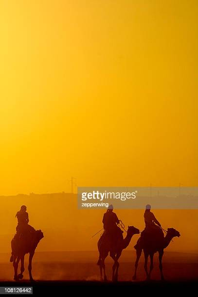 silhouettes - bedouin stock pictures, royalty-free photos & images
