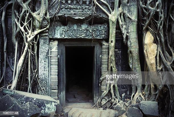 Ancienne cité d'Angkor