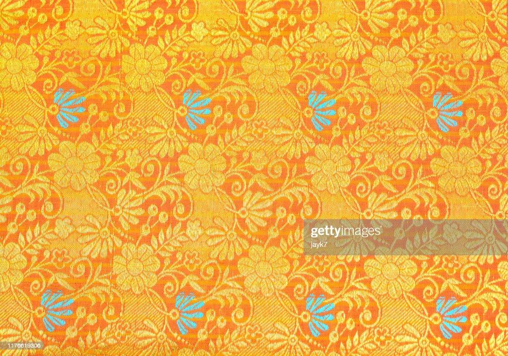 Silk Sari : Stock Photo
