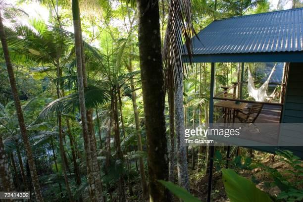 Silky Oaks Lodge in the treetops of Daintree Rainforest Queensland Australia