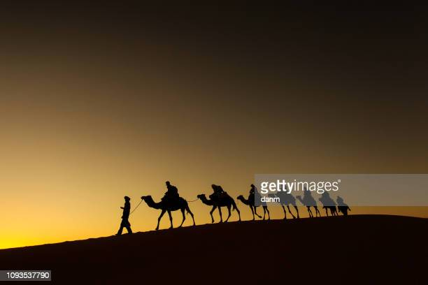 sillhouette of camel caravan with happy peopple going through the desert at sunset with red sky in background - camel train stock pictures, royalty-free photos & images