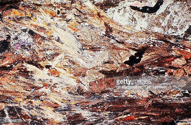 Sillimanitic Gneiss metamorphic rock section