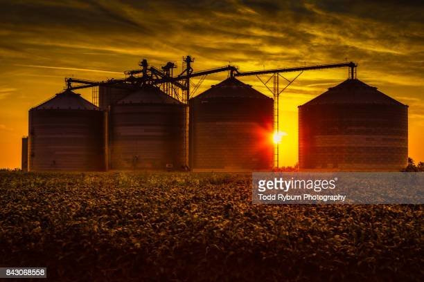 silo sunrise - silo stock photos and pictures