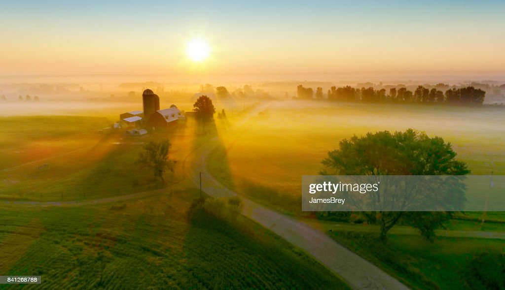 Silos and trees cast long shadows in fog at sunrise. : Stock Photo