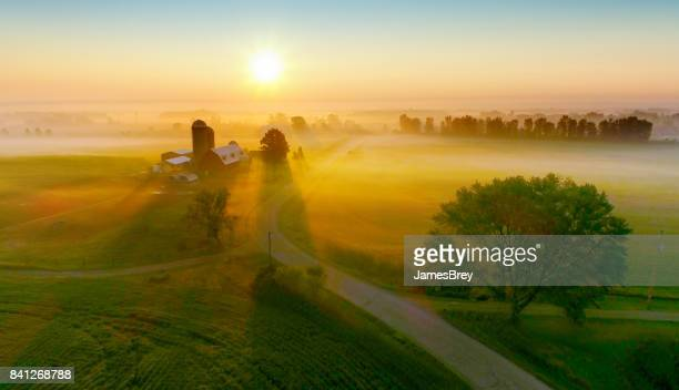 silos and trees cast long shadows in fog at sunrise. - non urban scene stock pictures, royalty-free photos & images