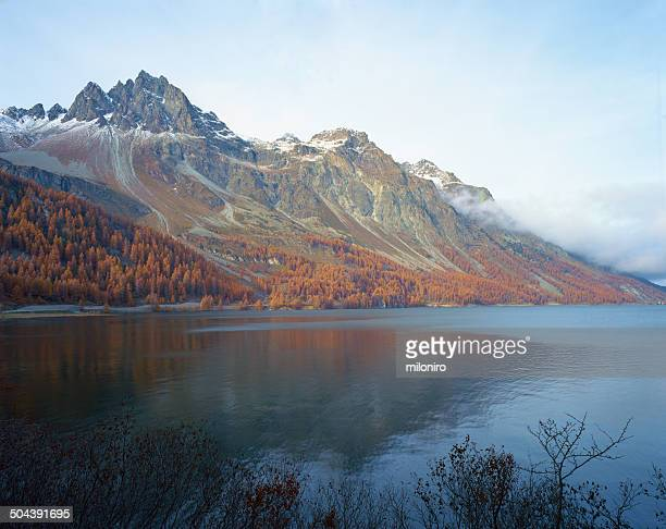 silsersee (lake sils) - miloniro stock pictures, royalty-free photos & images