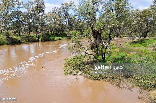 Siltladen floodwaters minimum till and other soil conservation and landcare techniques are needed to prevent topsoil loss and stream sedimentation...