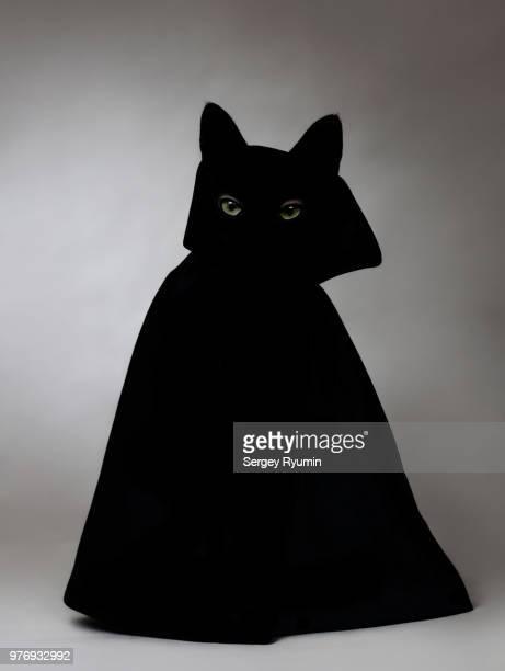 siluette of a cat wearing a cloak - maldad fotografías e imágenes de stock