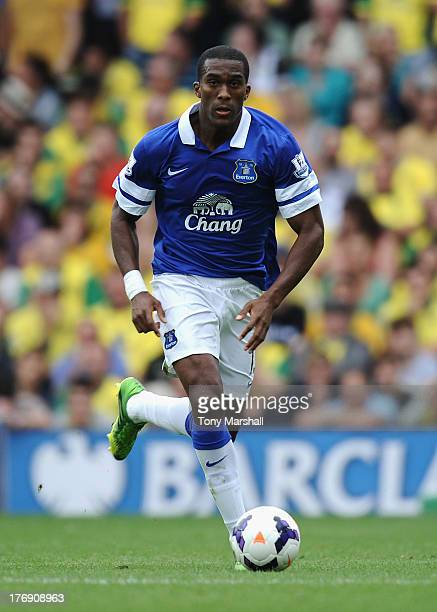 Silvain Distin of Everton during the Barclays Premier League match between Norwich City and Everton at Carrow Road on August 17, 2013 in Norwich,...