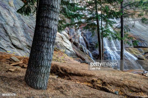 silver cascade falls, cheyenne canyon, co - cheyenne silver stock pictures, royalty-free photos & images
