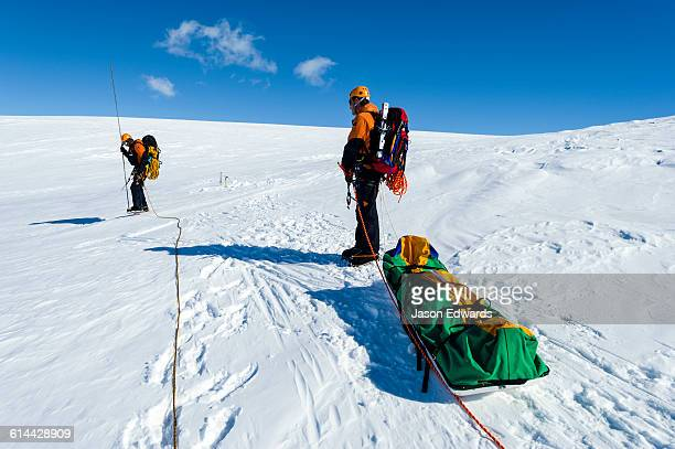 ice guides hauling a sled as they hike across a crevasse field on the slopes of mount erebus in antarctica. - snow scene stock photos and pictures