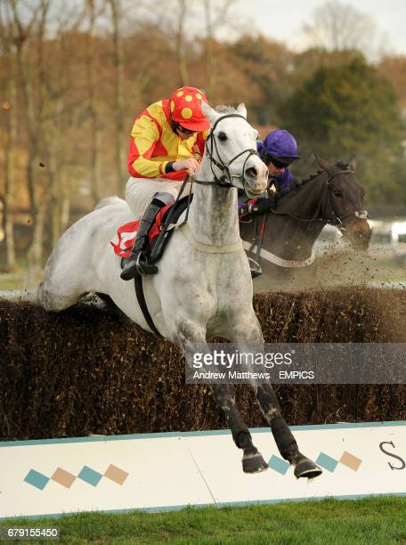 Silver Commander ridden by Jack Doyle and Royal Guardsman ridden by Noel Fehily in action in the Close Brothers Property Finance Novices' Limited...