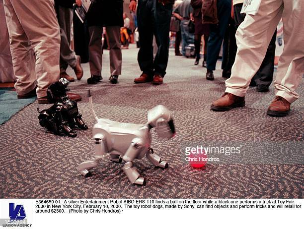 A silver Entertainment Robot AIBO ERS110 finds a ball on the floor while a black one performs a trick at Toy Fair 2000 in New York City February 16...