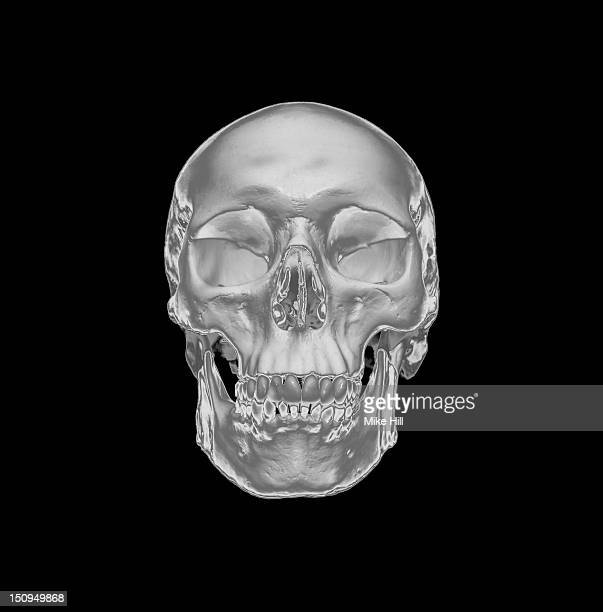 Silver human skull on a black background