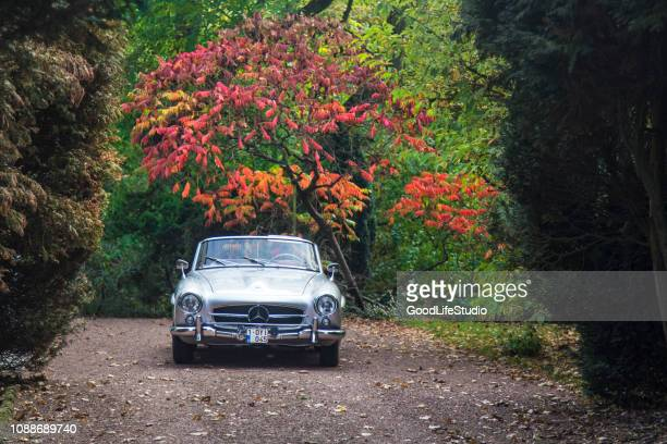 silver mercedes convertible from the 1960s in a park in belgium. - mercedes benz stock pictures, royalty-free photos & images