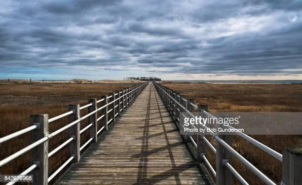 silver sands state park deck pov - コネチカット州 ストックフォトと画像