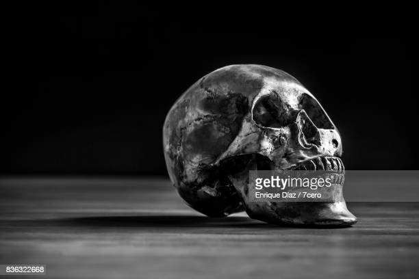 Silver Skull in Black and White