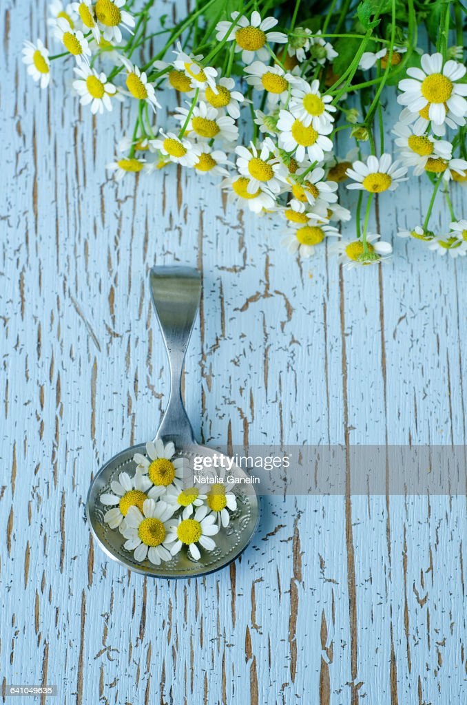 Silver spoon with chamomile flowers : Foto de stock