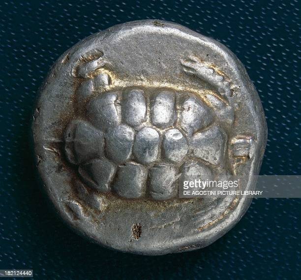 Silver stater of Aigina depicting a turtle in relief 480431 BC Greek coins 5th century BC