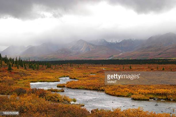 silver stream deep in alaskan tundra - tundra stock pictures, royalty-free photos & images