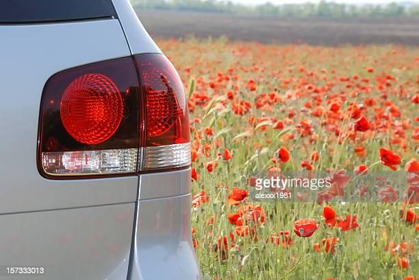 Plateado nuevo vehículo deportivo utilitario (SUV) y en el campo de amapolas, vista desde atrás