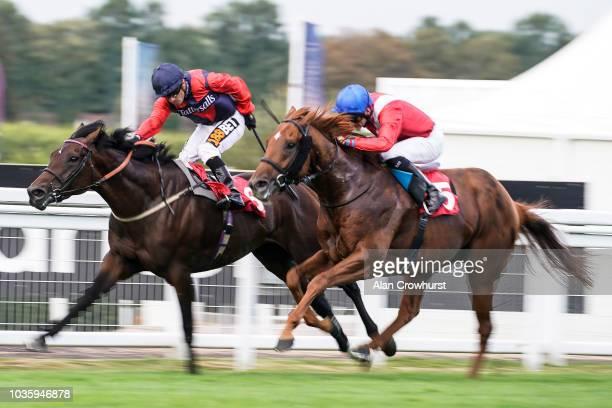 Silvestre De Sousa riding Knight Errant win The smarketscom Handicap Stakes at Sandown Park Racecourse on September 19 2018 in Esher United Kingdom