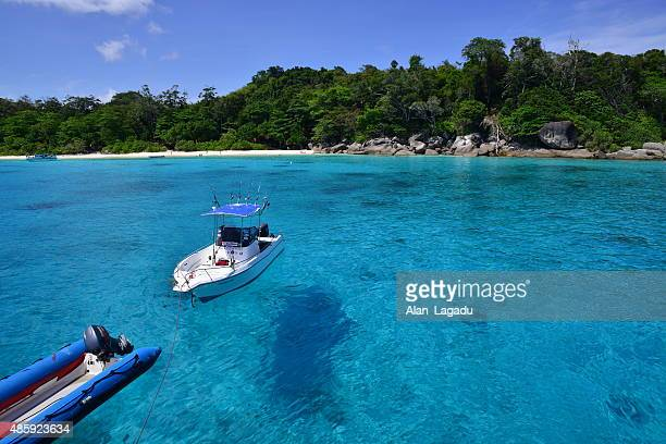similan islands, thailand. - big game fishing stock photos and pictures