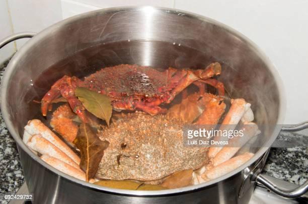 simmering Spider Crab