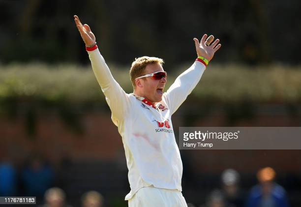 Simon Harmer of Essex appeals successfully for the wicket of Craig Overton of Somerset during Day Two of the Specsavers County Championship Division...