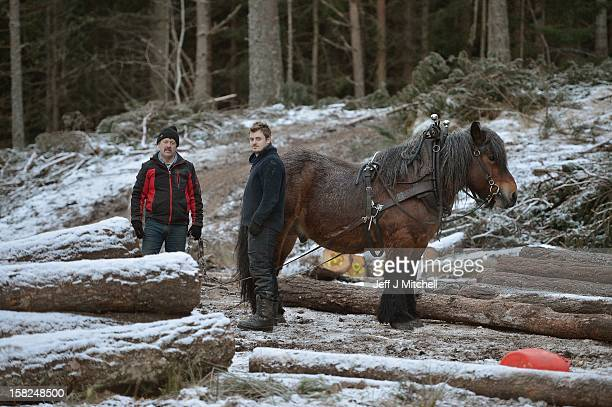 Simon Lenihan and his son Ian, full time commercial horse loggers, remove a Scots Pine tree from the Balmoral Estate with Sultan De Le Campagne, a 15...