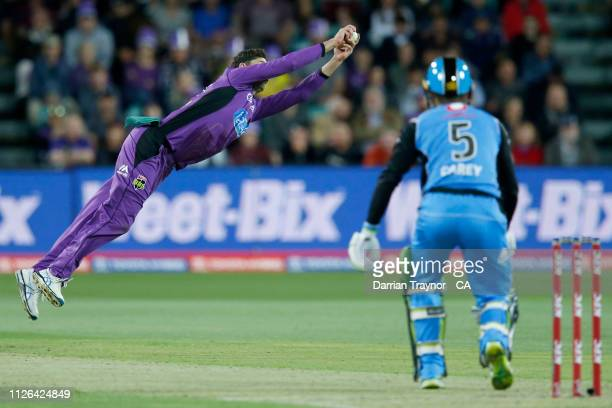 Simon Milenko of the Hobart Hurricanes takes a catch to dismiss Alex Carey of the Strikers during the Big Bash League match between the Hobart...