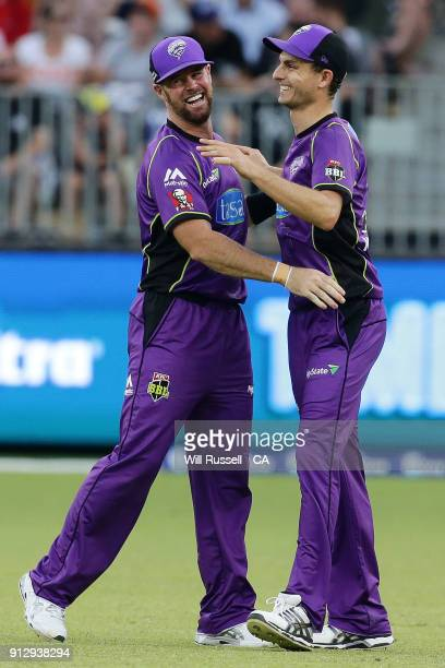 Simon Milenko of the Hurricanes celebrates after taking the wicket of Cameron Bancroft of the Scorchers during the Big Bash League Semi Final match...