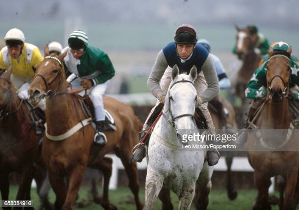 Simon Sherwood aboard Desert Orchid the 52 favourite enroute to winning the Cheltenham Gold Cup on 16th March 1989