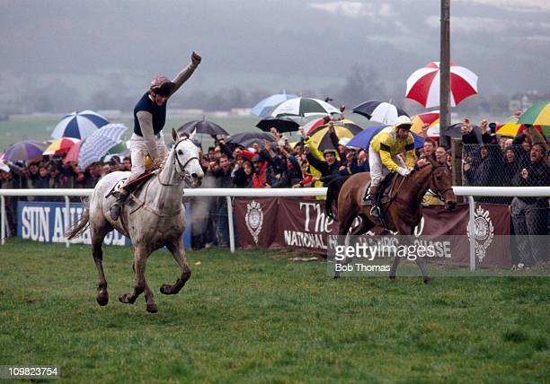 Simon Sherwood riding Desert Orchid celebrates as he beats Yahoo to the line to win the Tote Cheltenham Gold Cup at the Cheltenham National Hunt...
