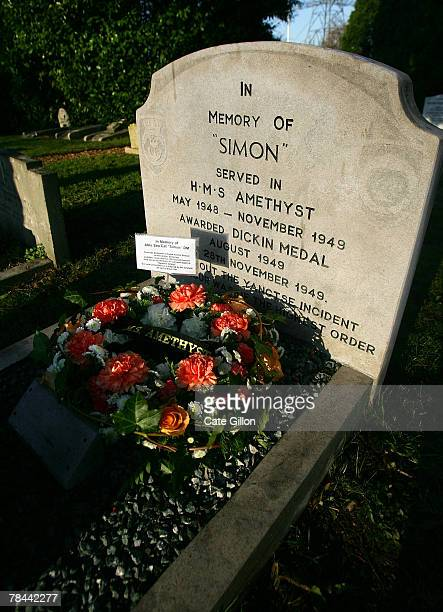 Simon the cat's grave who served on the HMS Amethyst from May 1948 November 1949 in the PDSA's Ilford Animal cemetery on December 13 2007 in London...