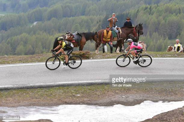 Simon Yates of Great Britain and Team MitcheltonScott Pink Leader Jersey / Mikel Nieve Ituralde of Spain and Team MitcheltonScott / Snow / Horse /...