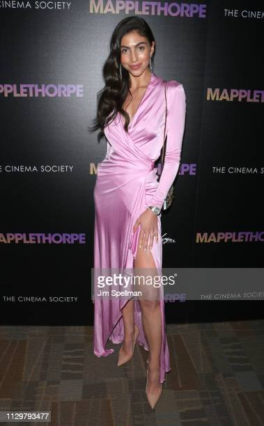 Simone Aptekman attends the special screening of Mapplethorpe hosted by Samuel Goldwyn Films with The Cinema Society at Cinepolis Chelsea on February...