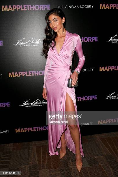 Simone Aptekman attends the special screening of 'Mapplethorpe' hosted by Samuel Goldwyn Films with The Cinema Society at Cinepolis Chelsea on...