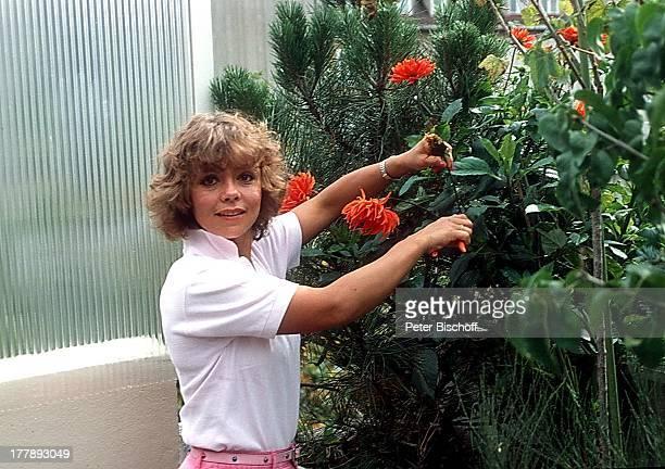 Simone Rethel Homestory Eigentumswohnung im sogenannten Fuchsbau München Bayern Deutschland Europa Terrasse Balkon Blumen gärtnern schneiden Blume...