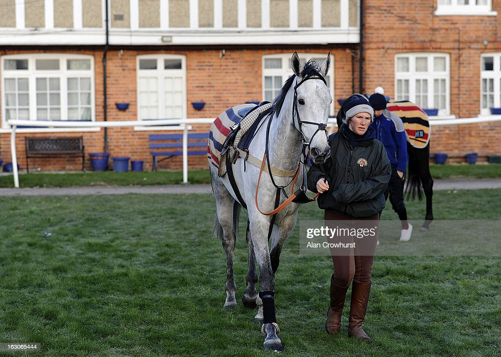 Simonsig is led round before returning to Lambourn due to frosty ground conditions at Newbury racecourse on March 04, 2013 in Newbury, England.