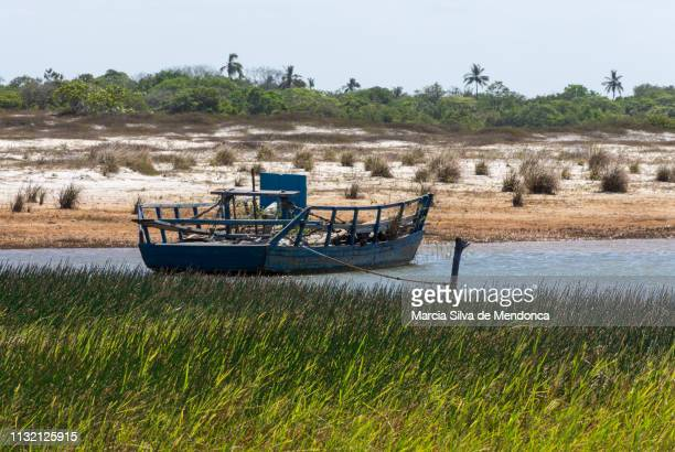 a simple blue fishing boat is moored on the banks of the blue lagoon in jericoacoara. - arbusto stock pictures, royalty-free photos & images