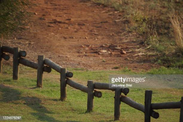 simple fence - briel stock pictures, royalty-free photos & images
