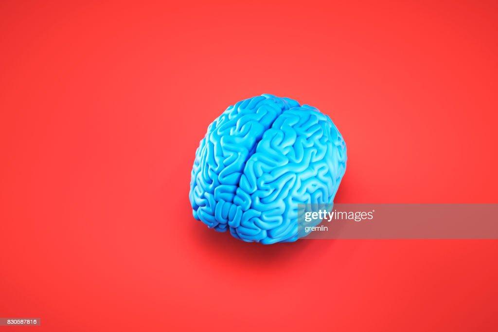 Simple image of brain : Stock Photo