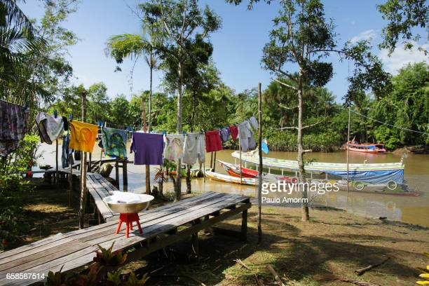 simple life in amazon,brazil - kleurenfoto stock pictures, royalty-free photos & images